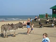 Mablethorpe donkey rides
